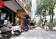 Cần bán Nhà mặt phố Ba Đình, Hà Nội, 1300m2, mặt 40m, 310 tỷ