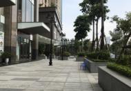 Chính Chủ Cần Cho Thuê căn hộ Home City 177 Trung Kinh giá rẻ nhất thị trường