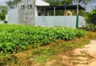 Bán đất tân lợi – Đại học Buôn Mê Thuột 235 triệu/lô