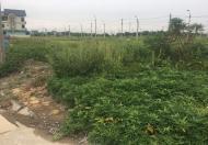 Bán đất 150m2 ngay cạnh trường tiểu học Đại Đồng, oto vào nhà, kinh doanh tốt,Đại Đồng,Thạch Thất