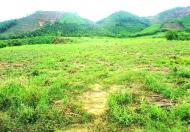 Bán đất 108.000m có thổ cư, đường lớn làm trang trại hoặc nhà máy