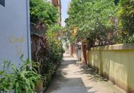 Bán đất tại Đường Tân Trại, Xã Phú Cường, Sóc Sơn, Hà Nội diện tích 154m2 giá 920 Triệu