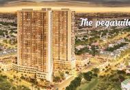 Cần cho thuê căn hộ Pegasuite Quận 8 diện tích 68m2, 2pn, 2wc. Full nội thất nhà mới lầu cao view đẹp giá 12tr/th.