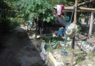 Chính chủ cần bán nhà cấp 4 tại Xã An Tịnh, Huyện Trảng Bàng, Tây Ninh.