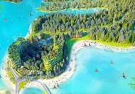 Ra mắt tòa Forest 5 Flamingo Đại Lải - Condotel trên không giữa lòng hồ đại lải - Chỉ 1,2 tỷ sở hữu ngay