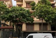 Cho thuê biệt thự Nhà BT nhà vườn  Hoàng Quốc Việt DT đất 140m DTXD 120m 4 tầng,