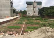 Chính chủ cần bán gấp lô đất khu tái định cư Kiêu Kỵ gia lâm, hà nội. S= 80m2. Giá 31 Tr/m2.