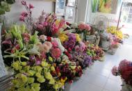 Chính chủ cần san nhượng Shop hoa khô tại Nhật Tảo Quận 10 TP HCM