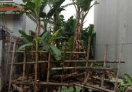 Bán Đất 85m2 cái Tắt, An Đồng, An Dương LH 0904097566