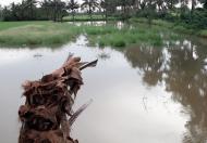 Cần bán 3 công đất ruộng mặt tiền đường lộ đal 2,5 đường đào duy từ ( gần cầu xẻo cối )