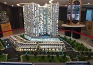 Cần cho thuê căn hộ Pegasuite Quận 8 diện tích 60m2, 2pn, 2wc, Nhà trống lầu cao view đẹp. Giá 7.5tr/th.
