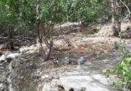 Chính chủ cần bán đất tại Vĩnh Hòa, Nha Trang, Khánh Hòa