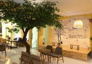 Cần sang nhượng quán cafe tại Thụy Khuê, Tây Hồ, Hà Nội