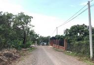 Đất 2 mặt tiền 256m2 12x21 sát cụm công nghiệp gần quốc lộ 1A chỉ 500m