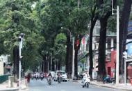 Bán nhà hxh Nguyễn Đình Chiểu, quận 1.dt: 4x17m