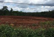 Chính chủ cần cho thuê đất mặt đường Sao Bọng Đăng Hà, ấp 7 ,xã Thống Nhất ,huyện Bù Đăng ,tỉnh
