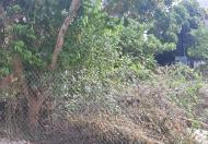 Bán đất ngõ 111 đường F325 phường Bắc Lý-