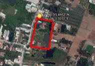 Cần bán gấp khu đất vườn 9.000m2 đường Kênh T12, Tân Quý Tây, Bình Chánh