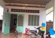Bán đất thổ cư có nhà cấp 4 chính chủ tại ấp Tràng Sắn , xã Vĩnh Hoà, huyện Phú Giáo, Bình Dương