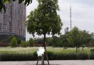 Bán Biệt thự KĐT Dương Nội, Hà Đông, diện tích 184m2, giá 16,5 tỷ, 0982405042