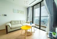 Cho thuê căn hộ cao cấp dự án Vinhomes Sky Lake