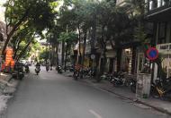 Bán nhà phân lô, ô tô, Trần Quang Diệu Đống Đa 30m 5 tầng mặt tiền 3.1m giá 4.5 tỷ. kinh doanh.