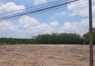 Đất đầu tư Chơn Thành 200m2 378 triệu