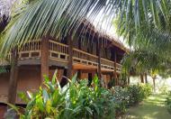 Bán đất để xây dựng khu resot + homestay nghỉ dưỡng phan thiết bình Thuận.