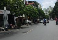 Bán nhà mặt phố Trương Công Giai, DT: 32m, MT: 3.2, Giá 8.6 tỷ.