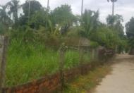 Chính chủ cần bán đất tại xã Điện Phong, huyện Điện Bàn, tỉnh Quảng Nam