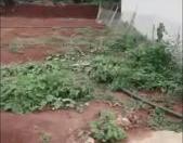 Chính chủ cần bán lô đất đẹp nằm hẻm Y Moan - Buôn Ma Thuột