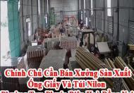 Chính Chủ Cần Bán Xưởng Sản Xuất Ống Giấy Và Túi Nilon Phường Tam Phước Biên Hoà Đồng Nai.