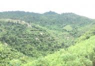 Bán đất 500.000m giá chỉ với 18.000vnd/m gần khu du lịch thác YangBay