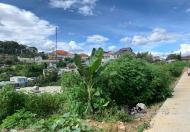 Đất xây dựng biệt thự view đẹp An Sơn, F4