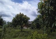 Bán Lô Góc 2 mặt tiền DT769 Quách Thị Trang, xã Vĩnh Thanh, huyện Nhơn Trạch, Đồng Nai.