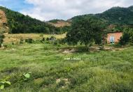 Bán đất đường lớn rộng 22.000m mặt tiền đường đi thác YangBay, Khánh Hòa