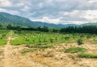 Bán trang trại bưởi xã Khánh Phú gần du lịch thác YangBay giá rẻ rộng 36.000m