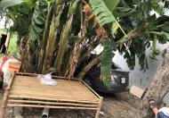 Chủ kẹt tiền cần bán gấp lô đất HXH đường Đình Phong Phú TNPB , giá 28tr/m2