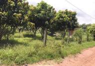 Bán 3 Sào Đất Có Nhà Vườn Nghĩ Dưỡng, trung tâm xã Vĩnh Thanh, Nhơn Trạch. Đường Quách Thị Trang (ĐT 769)