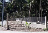 Cần bán lô đất nền thổ cư tại Xã Hòa Định, Huyện Chợ Gạo, Tiền Giang. LH 0834 10 65 75