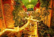 Chính chủ cần bán bungalow mới xây dựng được 2 tháng tại Ninh Thắng, Hoa Lư, Ninh Bình