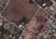 Bán 7,991.6m2 đất tại ấp Nhị Tân 1, xã Tân Thới Nhì, huyện Hóc Môn, TP.HCM