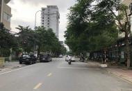 Bán lô góc Nguyễn Cao – Ngô Tất Tố ,  Phường Ninh Xá , TP  Bắc Ninh