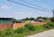 Bán đất MT Xuân Thới Sơn 12, Hóc Môn: 25 x 50= 1254,5m2, giá:9,5 tr/m2