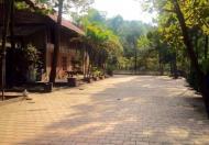 Bán gấp mảnh đất 3300m tại 165 Xương Giang-Bắc Giang tổ hợp dự án khách sạn, chung cư.