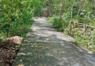 Chính chủ cần bán lô đất tại Tam Đàn, Phú Ninh, Quảng Nam