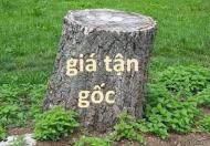 Bán Đất Thượng Thanh 40m gần Big C Long Biên,Ngõ Ôtô,An Sinh Đỉnh