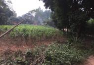 Bán đất mặt đường bê tông, Xã Phù  Ninh  154m2
