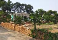 Đất nghỉ dưỡng phú mãn đất nhà vườn phú mãn 1860m giá chỉ 2 triệu/m.