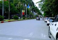 Bán Nhà Nguyễn Khuyến, Gần Hồ Văn Quán, Vỉa hè, ÔTô, Kinh Doanh, Nhà đẹp, 90m2 Nhỉnh 9Tỷ